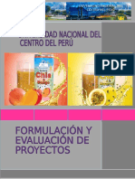 234920929 Proyecto Bebida de Chia Final