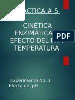 Actividad Enzimatica Practica 5