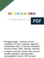 Sistim Sensorik & Autonom.pptx