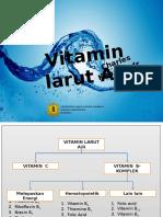 Vitamin Larut Air18062012