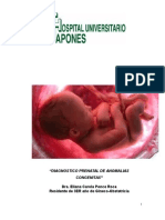 Diagnostico Prenatal de Malformaciones Fetales.ppt