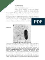 Bacterias Fitopatógenas