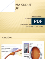 220235723-Referat-Glaukoma-Sudut-Tertutup.pptx