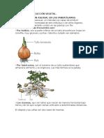 Tipos de Reproducción Vegetal