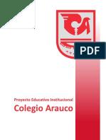PEI Colegio Arauco