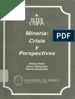 Mineria Crisis y Perspectivas