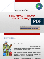 INDUCCION .ppt