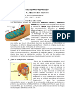 Cuestionario Respiraciòn 5 Fisiologia Vegetal
