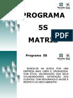 Programa 5s Geral