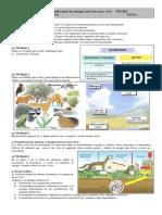 2ESO-Ecosistemas1