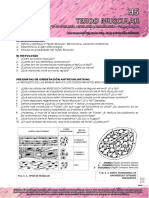 h5 - Tejido Muscular 2015 31-34 Web (1)