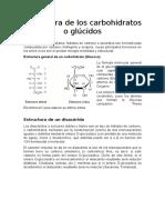 Estructura de Los Carbohidratos o Glúcidos