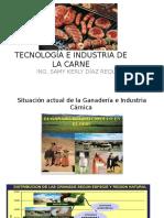 1 Tecnología e Industria de La Carne