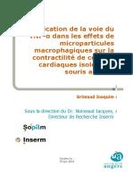Mémoire de M1 SIMS (2014)