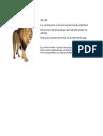 The Lion Ficha