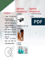 Leaflet PTERIGIUM Part 2