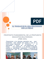 PEM 2005.ppt