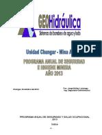 W-Programa Anual de SSOMAC 2013.doc