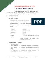 Resumen Ejecutivo VITOC