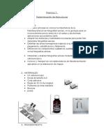 PRACTICA 7 Determinacion de Estructuras 2 (1)