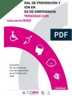 Guia-general DISCAPACIDAD.pdf