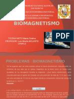 BIOMAGNETISMO.pptx