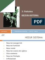 Hezur Sistema