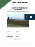 EST_SUELOS  IE DECISION CAMPESINA.doc