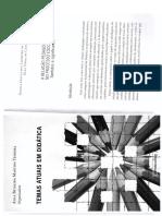 DALBEN, A. I. L. F., CASTRO, E. V. A relação pedagógica no processo escolar