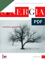 Sinergia.pdf