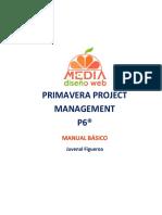 Manual Basico - Primavera P6