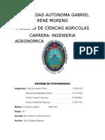 Fithormonas a-1 Fisiologia Vegetal