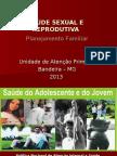 Palestra Saúde Reprodutiva
