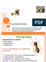 ARTROPODES ppt