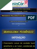 04 - Processos Proliferativos não Neoplásicos