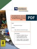 Informe Final Contaminacion de Aguas