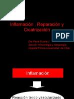Inflamacion, Reparacion y Cicatrizacion