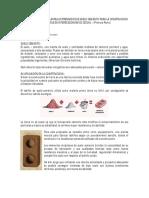 Ladrillos Del Suelo Cemento_introduccion