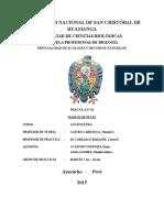 Clasificación Taxoomica de la Trucha