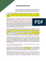 MICROMETEOROLOGIA (1)