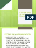Foundations of Individual Behavior_report