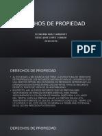 Derechos de Propiedad Diego Jose Lopez Corado