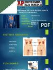 Farmacoterapia de Las Itu
