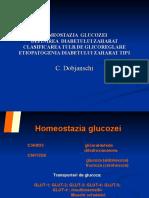 Homeostazia Glucozei