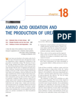 Amino Acid Catabolism1