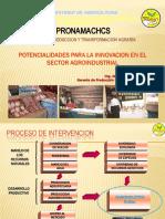 produccion y elaboracion de la moraya