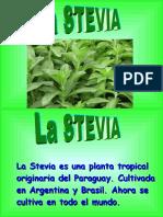 Diapositivas+de+la+Stevia.ppt