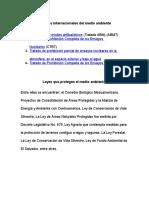 Tratados Internacionales Del Medio Ambiente