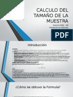 CALCULO DEL TAMAÑO DE LA MUESTRA.pptx
