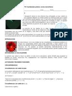 PROYECTO POLARES ok (1).pdf